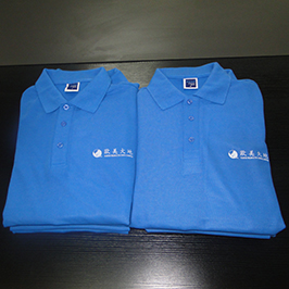 Polo majica prilagođena štampana uzorka A3 štampačem WER-E2000T
